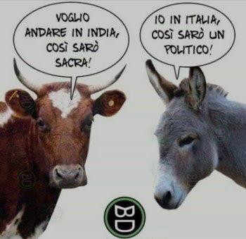 Vignette Divertenti Sulla Politica Settemuse It