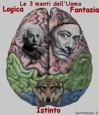 logica fantasia istinto