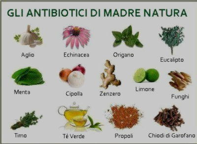 alimenti antibiotici naturali