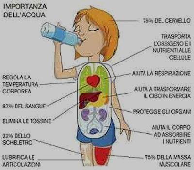 Vignetta importanza acqua
