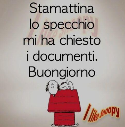 Vignette Divertenti Su Snoopy Settemuseit