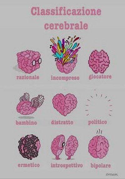 Vignetta classificazione cerebrale