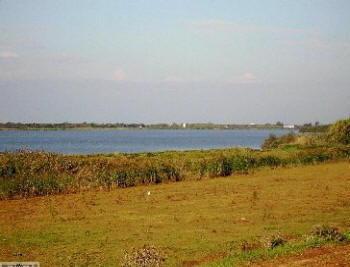 Sabaudia Lago di Caprolace
