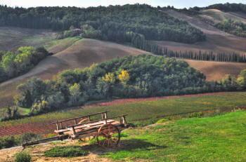 Siena - Monteriggioni - La Campagna