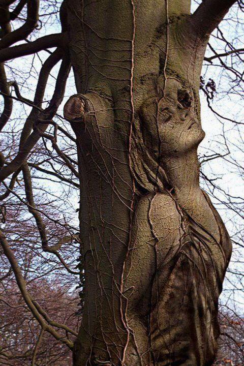 sculture-originali-068