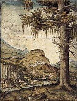 Biografia di Altdorfer Albrecht