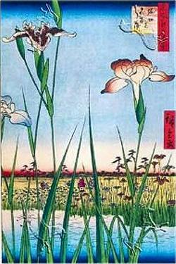 Biografia e opere di Ando Hiroshige