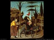 Butinone Bernardino
