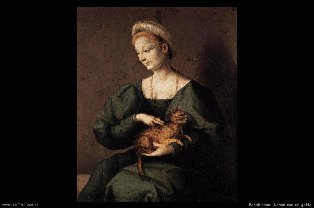 bacchiacca_506_woman_with_a_cat