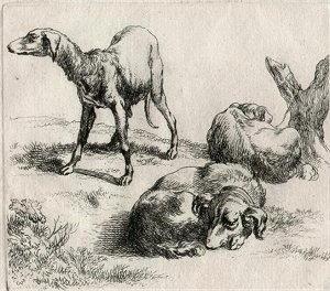 Disegno di Nicolaes Pietersz Berchem