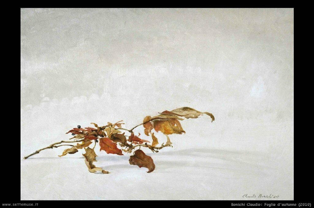 bonichi_claudio_006_foglie_d_autunno_2010