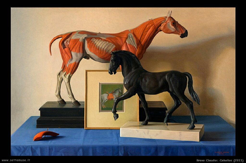 bravo_claudio_013_caballos_2011