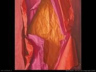 Red rose and orange paper (2008)