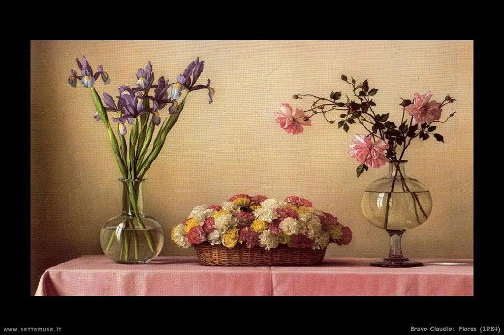 bravo_claudio_025_flores_1984