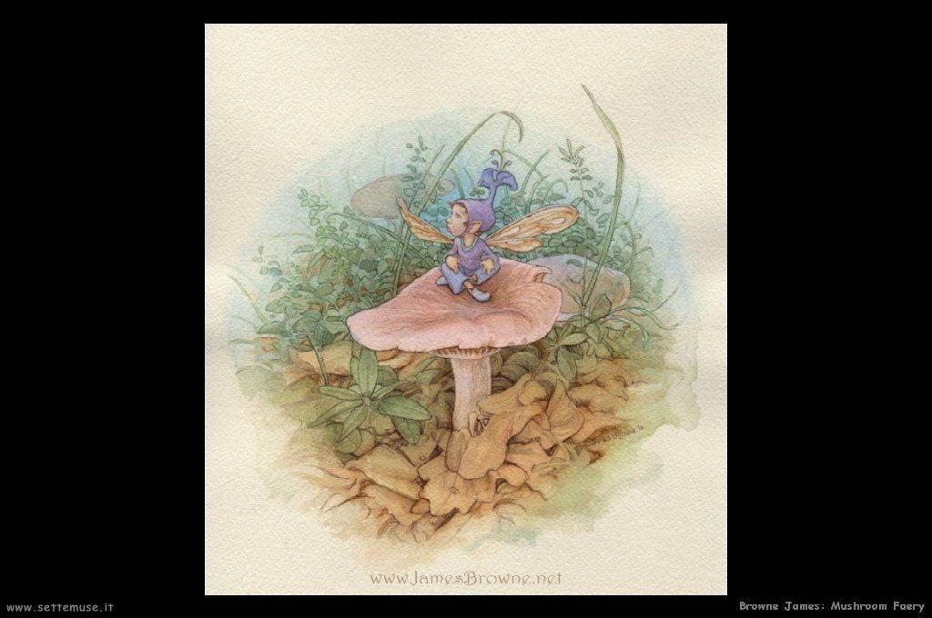 browne_james_022_mushroom_faery