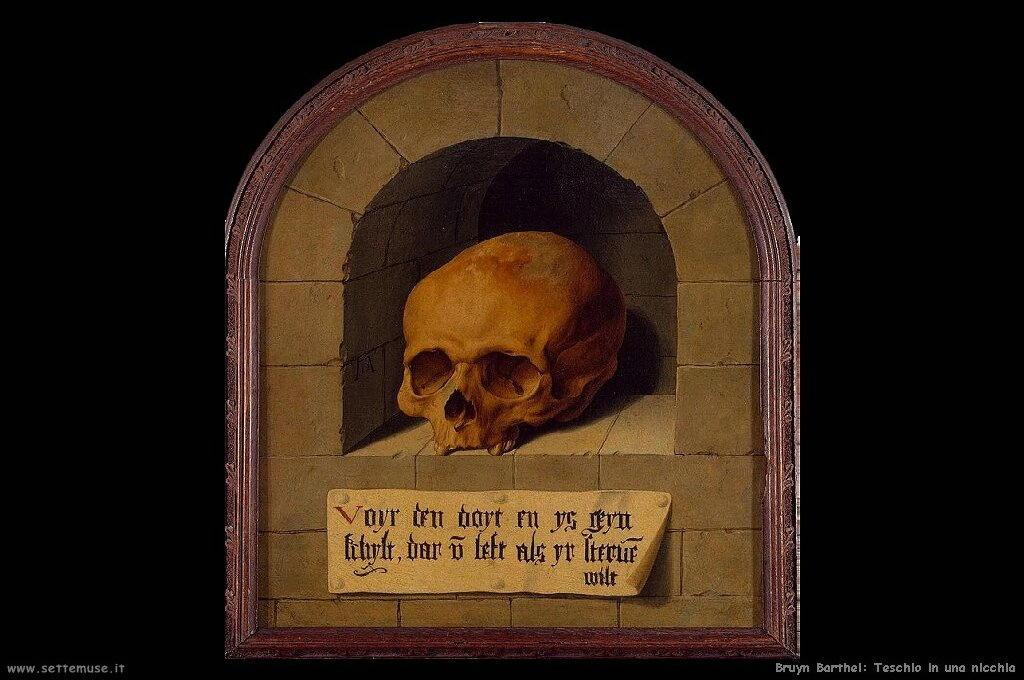 bruyn_barthel_502_skull_in_a_niche