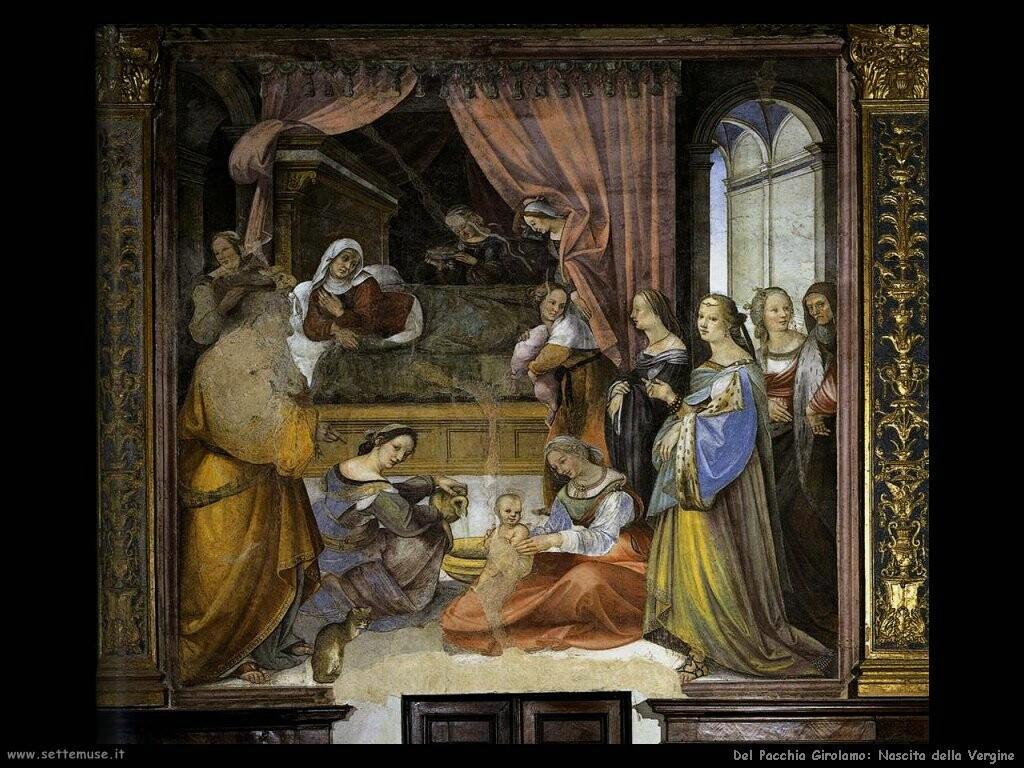 Del Pacchia Girolamo