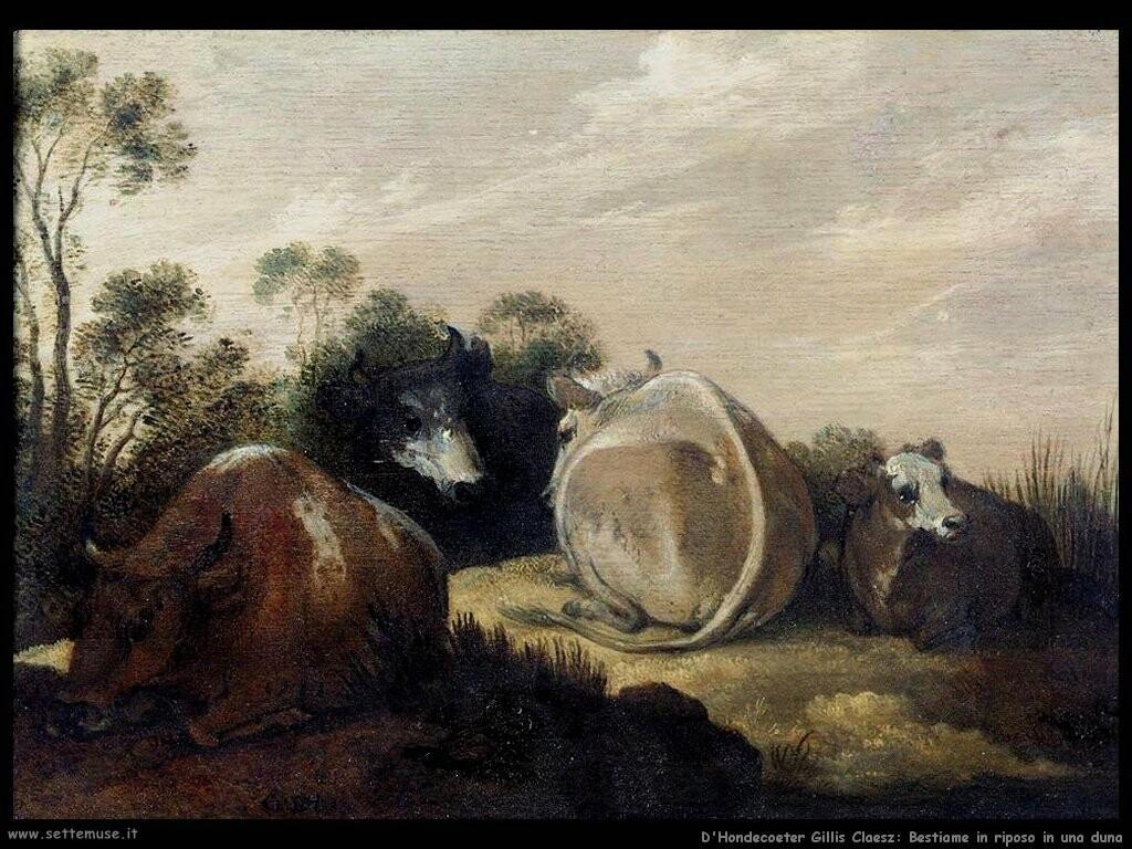 d hondecoeter gillis claesz Bestiame in riposo su una duna