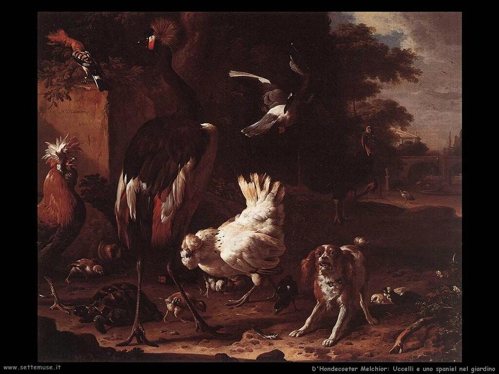 d hondecoeter melchior Uccelli e un cane spaniel nel giardino
