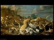de vos pau Caccia al leopardo