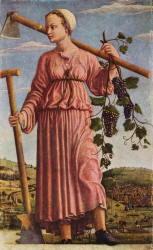 Pitture di Francesco del Cossa