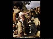 del salviati cecchino  Resurrezione di Lazzaro
