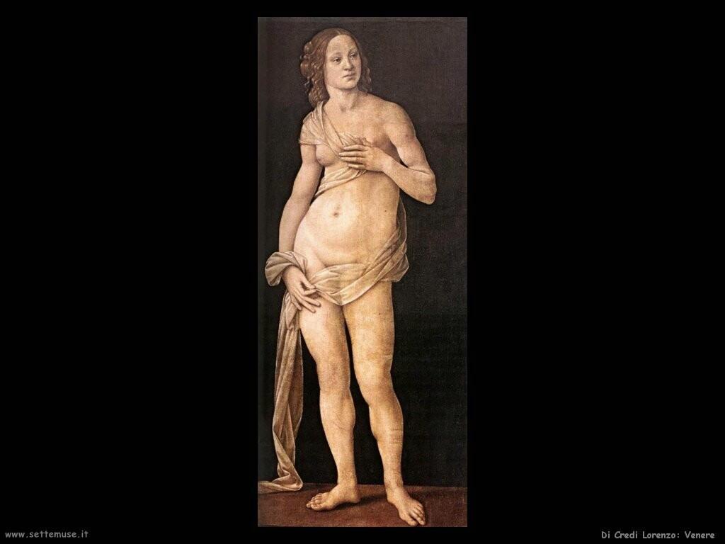 di credi lorenzo Venere