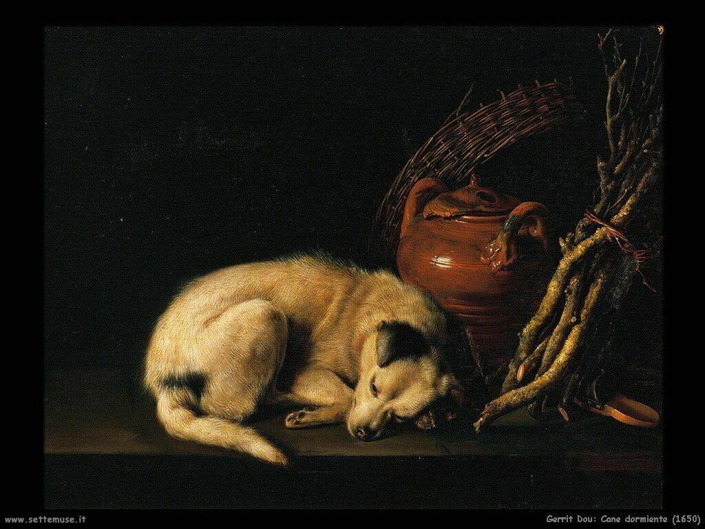 dou gerrit  Cane che dorme (1650)