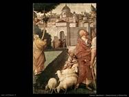 ferrari gaudenzio Annunciazione a Gioacchino
