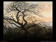 caspar david friedrich L'albero dei corvi