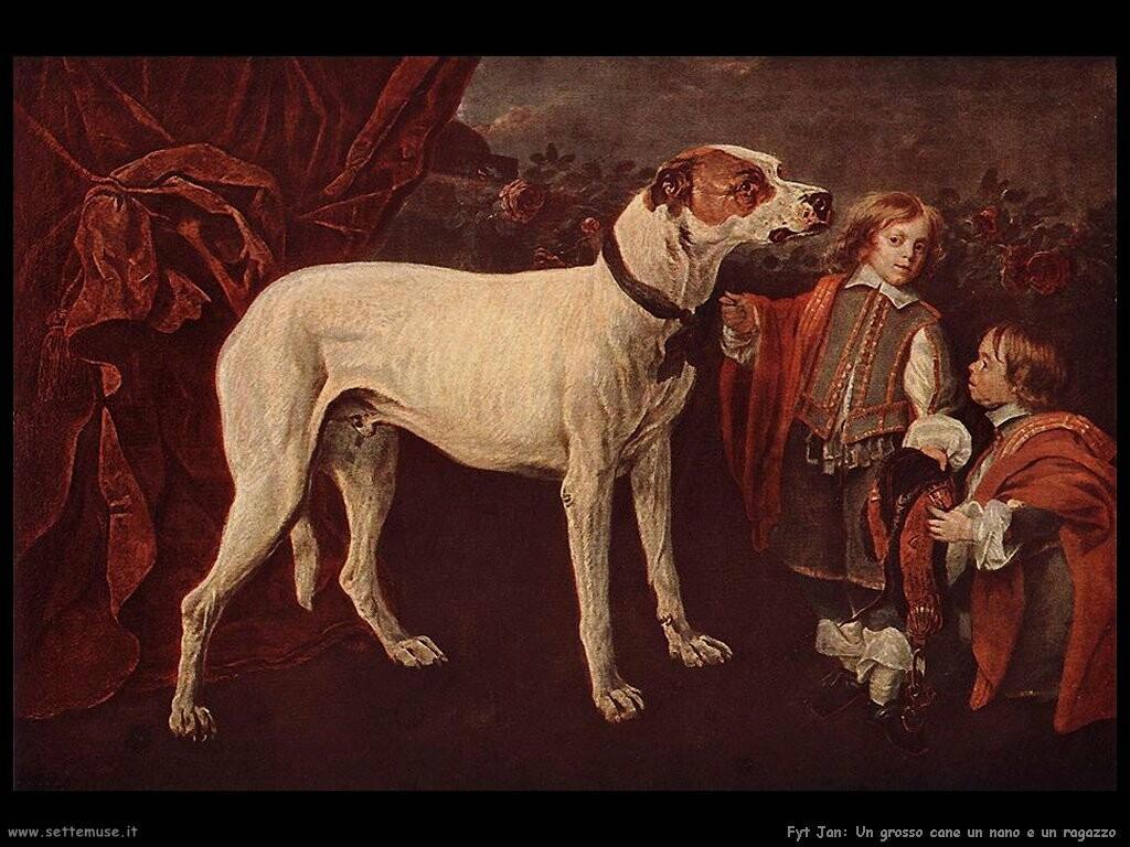 fyt jan Il grosso cane dwarf e il ragazzo
