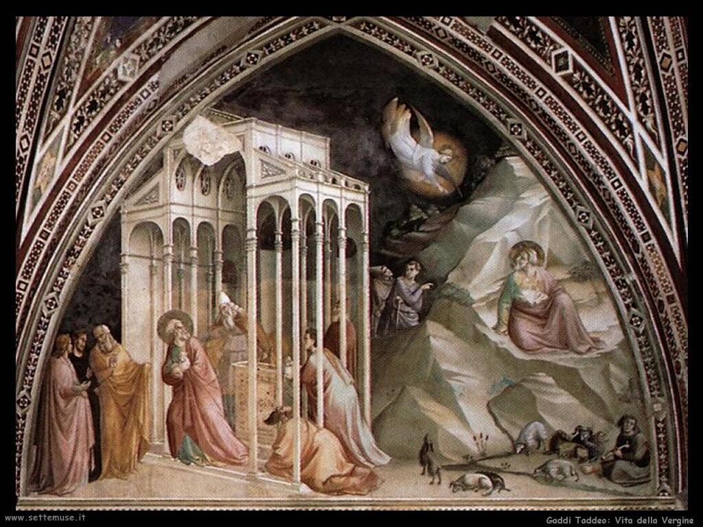 gaddi taddeo Vita della Vergine