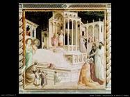 gaddi taddeo Presentazione di Maria al tempio