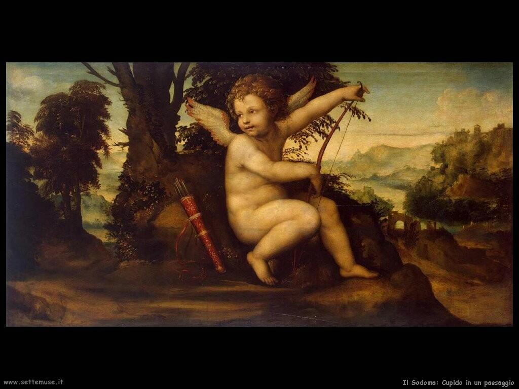 il sodoma Cupido in un paesaggio