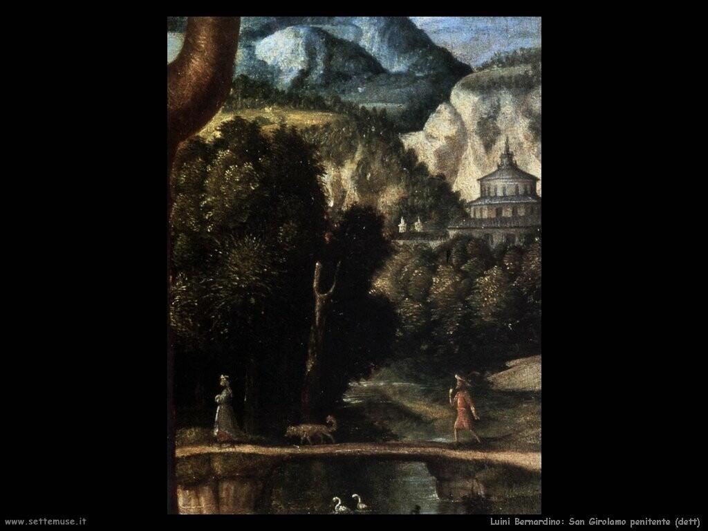 luini bernardino San Girolamo penitente (dett)