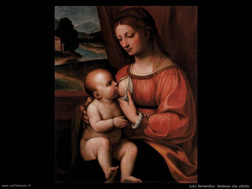 luini bernardino Madonna che allatta