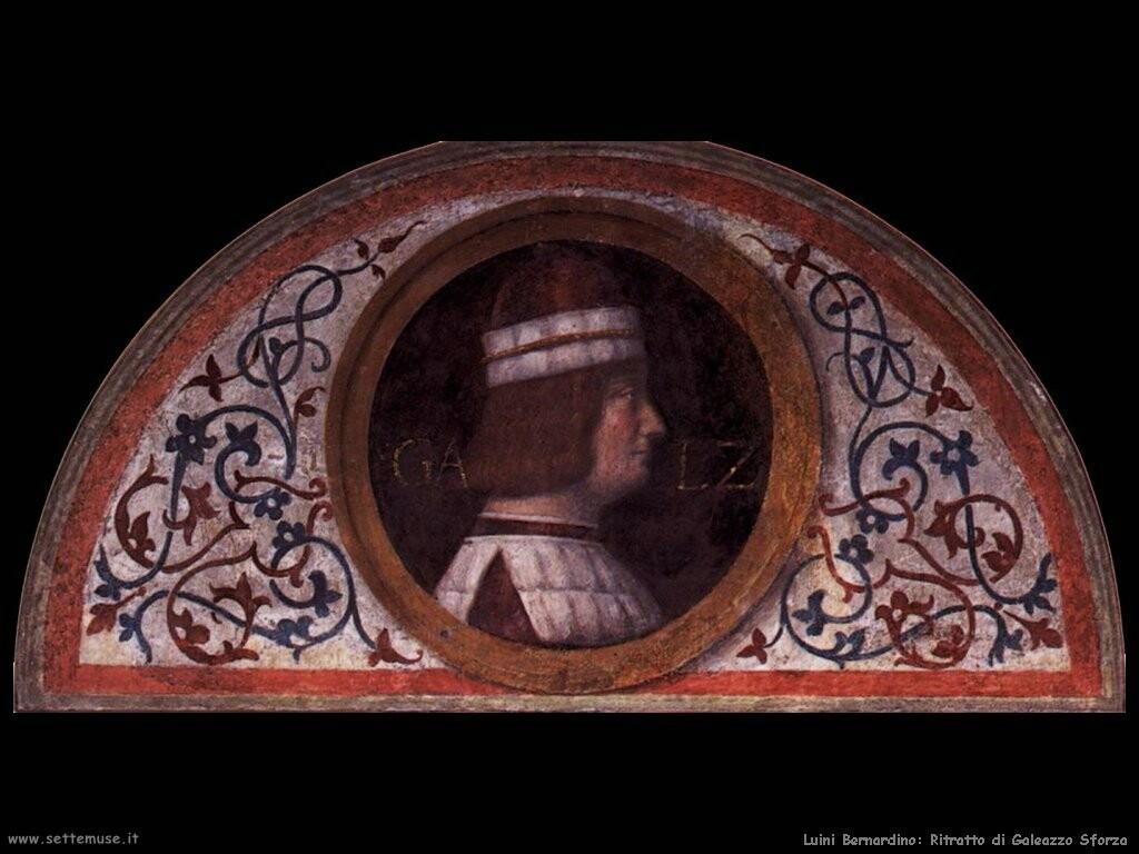 luini bernardino  Ritratto di Galeozzo Sforza