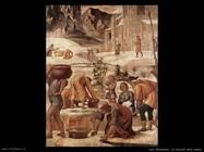 luini bernardino La raccolta della manna