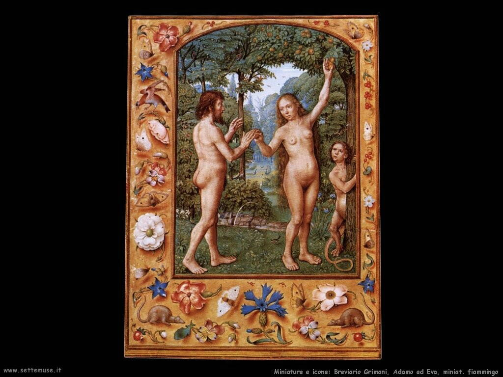miniature fiamminghe  Breviario Grimani, Adamo ed Eva