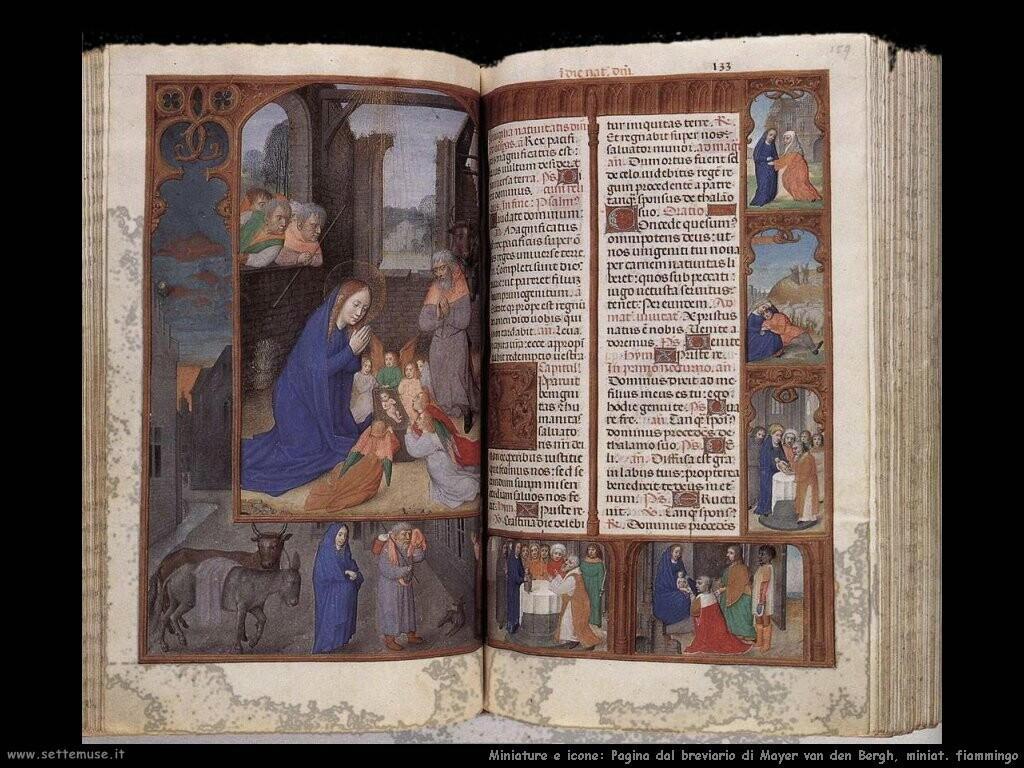 miniature fiamminghe  Pagina dal breviario Mayer van den Bergh