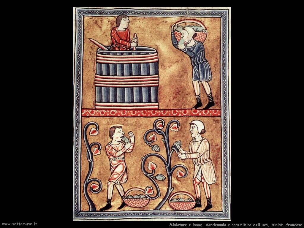 miniature francesi  Vendemmia e spremitura dell'uva