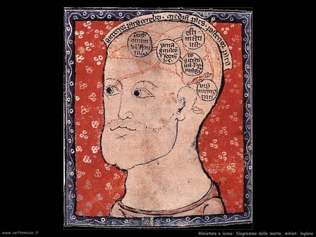 miniature inglesi  Diagramma della mente