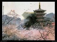 maoshan liu 007