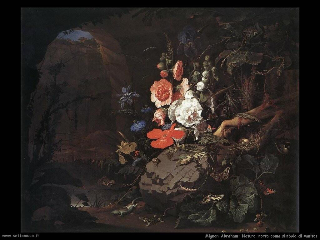 mignon abraham La Natura come simbolo vanitas