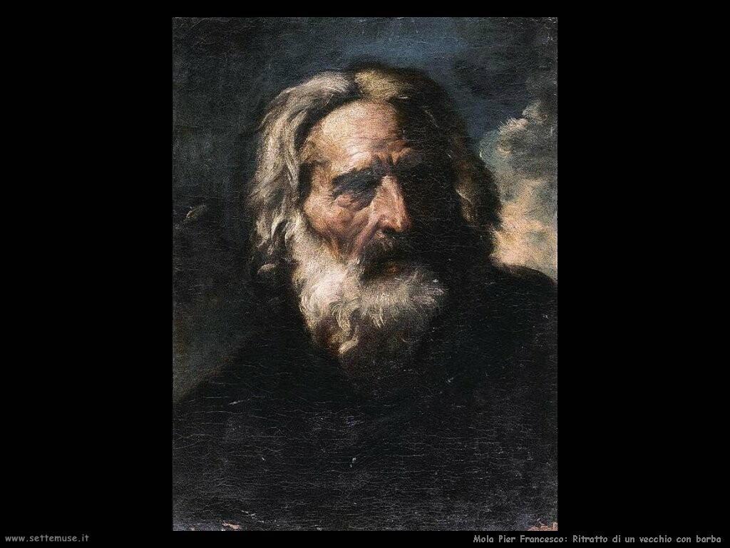 mola pier francesco Ritratto di un vecchio con la barba