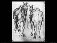 pisanello  Cavalli