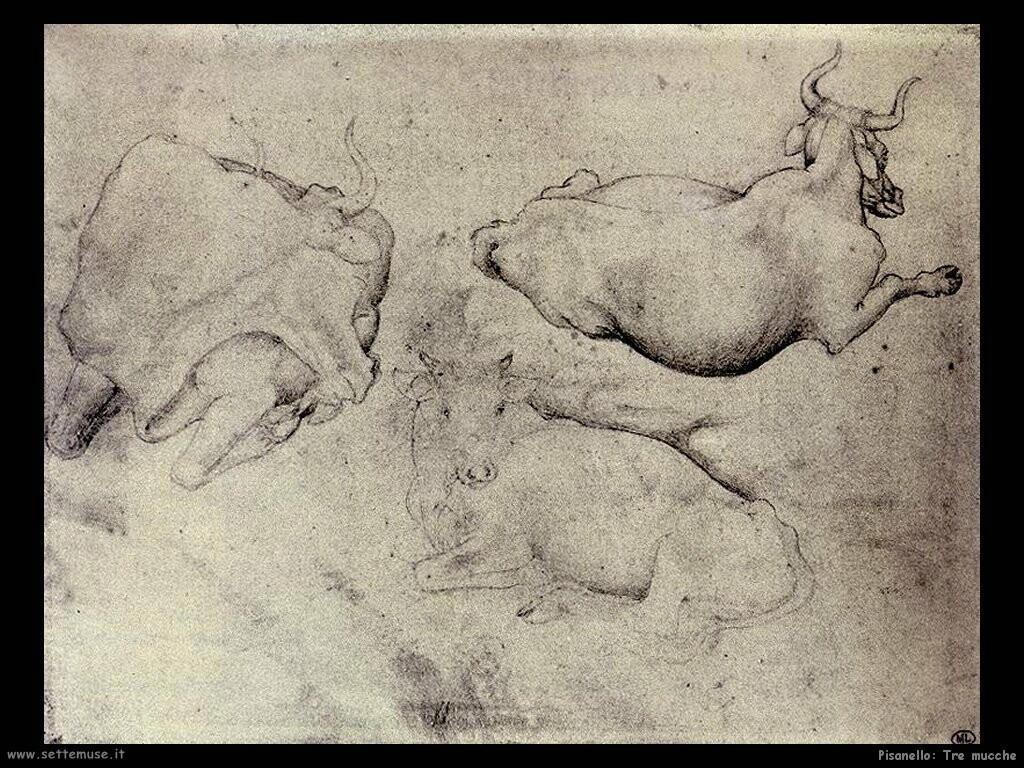 pisanello Tre mucche