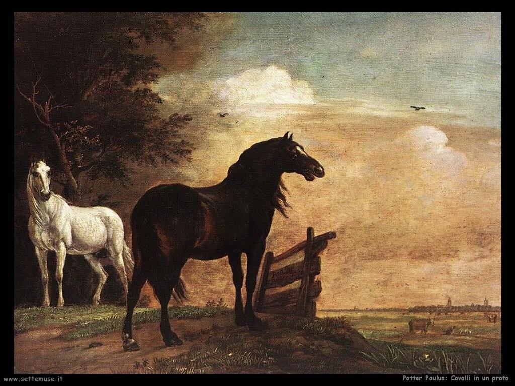 potter paulus Cavalli in un campo