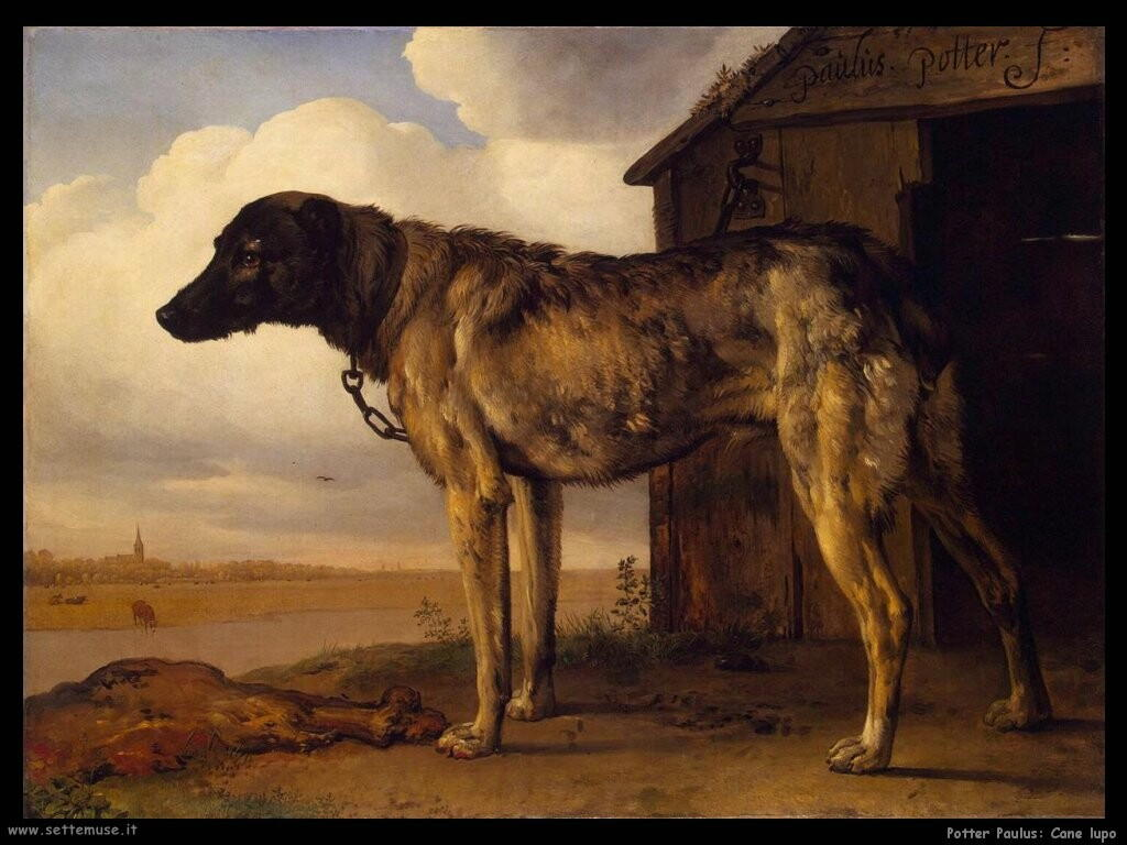 potter paulus Wolf hound