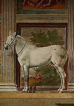 Pittura di Giulio Romano  Pippi
